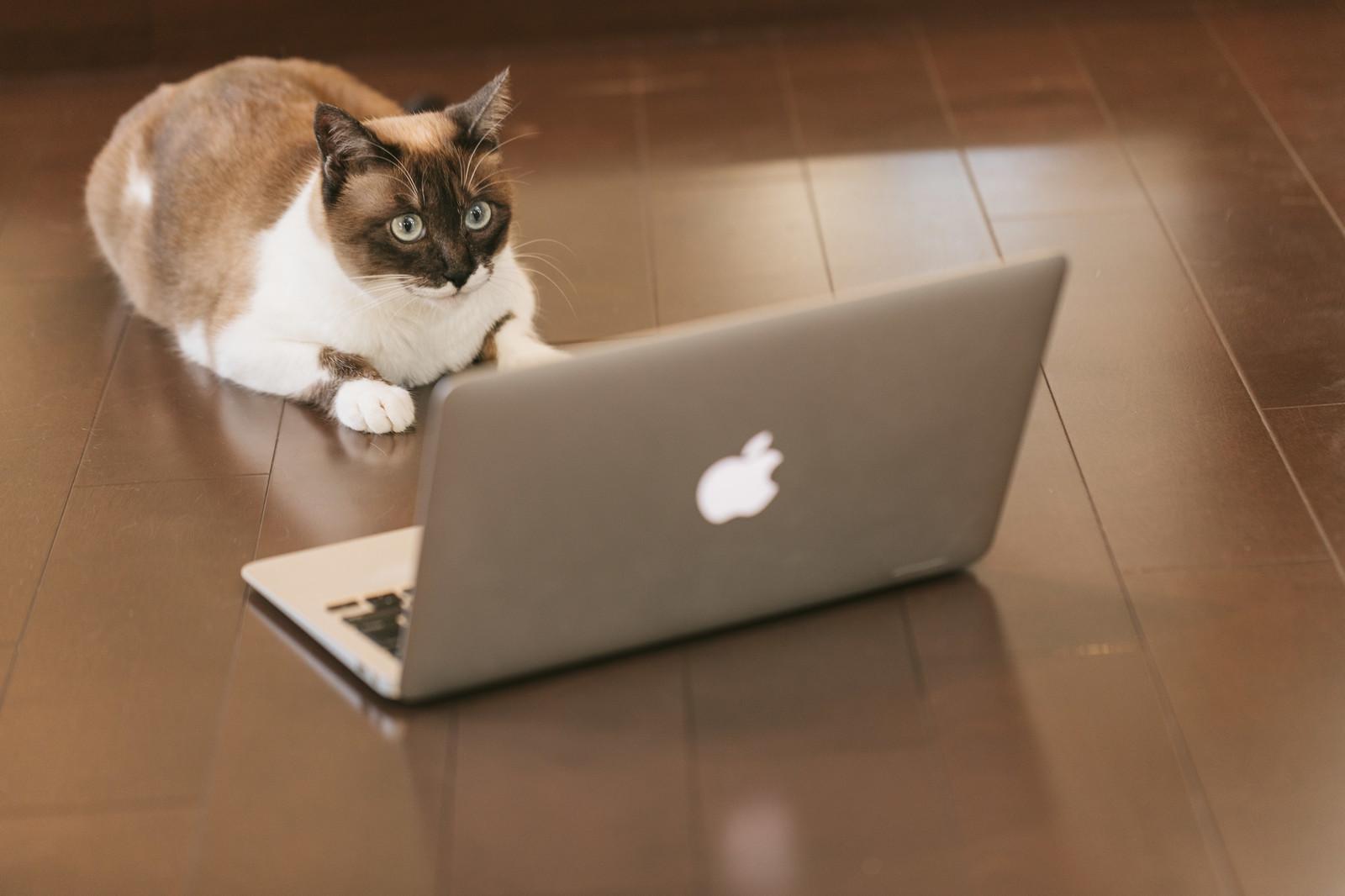 ネットショッピングのメリット、デメリット、失敗談について