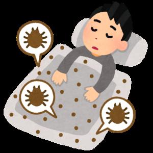梅雨の寝室カビ対策、布団に潜むダニの駆除方法と効果について