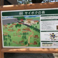 埼玉県サイボクハムのアスレチック!駐車場で狙うべき場所と温泉利用について