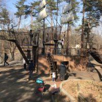 国営武蔵丘陵森林公園のアスレチックは大人も子供も楽しめる巨大スポット!